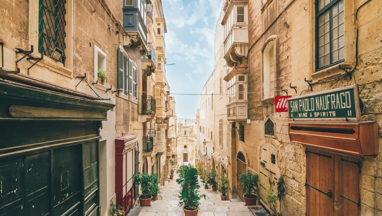 Высшее образование на Мальте | Grant Study